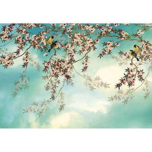 Komar Fotobehang 8-213 Sakura