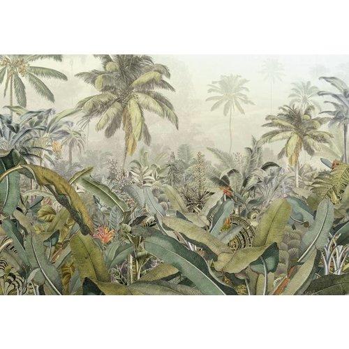 Komar Fotobehang vlies XXL4-063 Amazonia