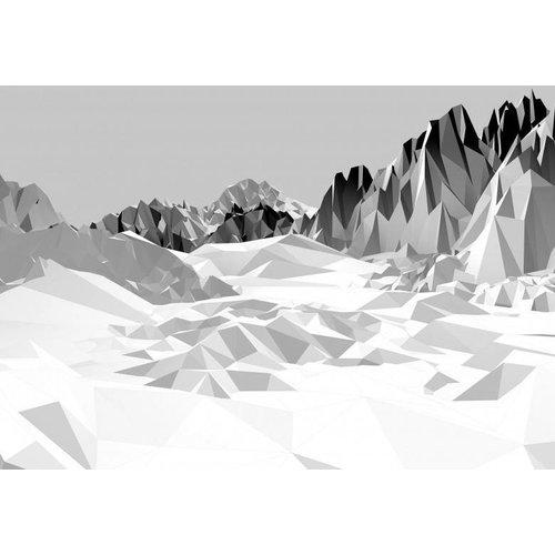 Komar Fotobehang 8-208 Icefields