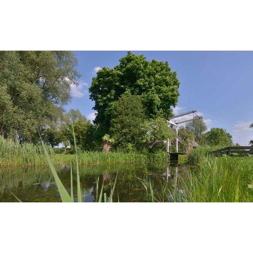Noordwand  Holland Fotobehang Naardermeer Bruggetje 0937