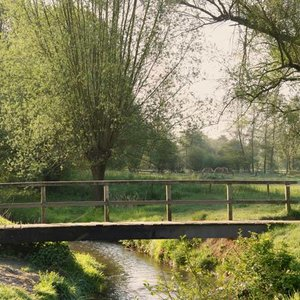 Noordwand  Holland Fotobehang Slenaken 1381