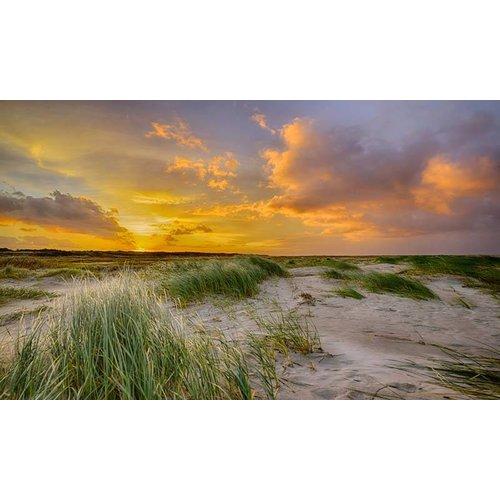 Noordwand  Holland Fotobehang Schiermonnikoog Duinen 0356