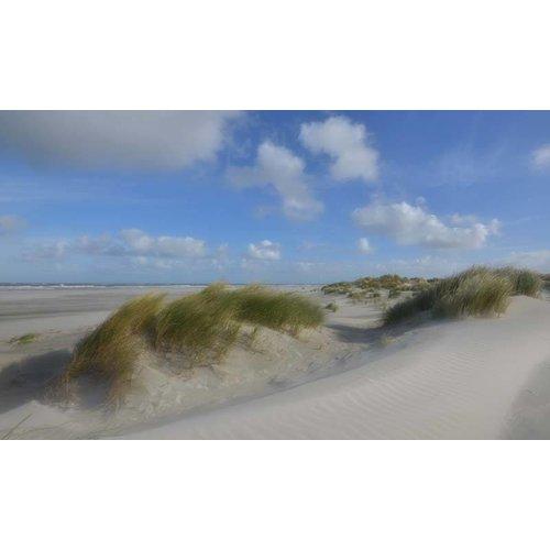 Noordwand   Holland Fotobehang Schiermonnikoog Duinen III 0510