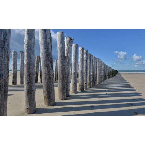 Noordwand   Holland Fotobehang Strandpalen 5520
