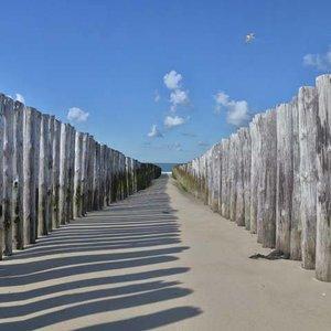 Noordwand  Holland Fotobehang Strandpalen II 5533