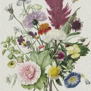 Dutch Painted Memories Mural Flower Bucket 8003