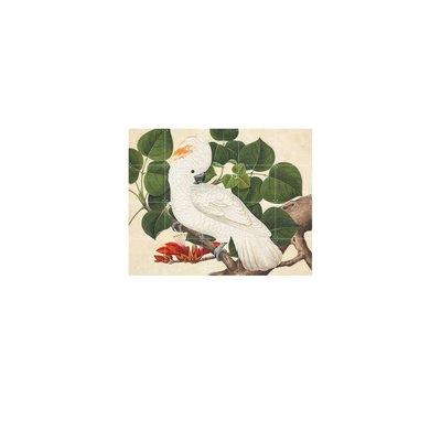 IXXI IXNHM017 Wanddecoratie - Cockatoo - B100xH80cm - Synaps papier - Multicolor