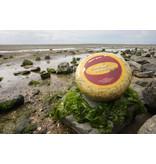 Organic Vlielander Seawead Cheese