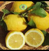 Zitrone Amalfi