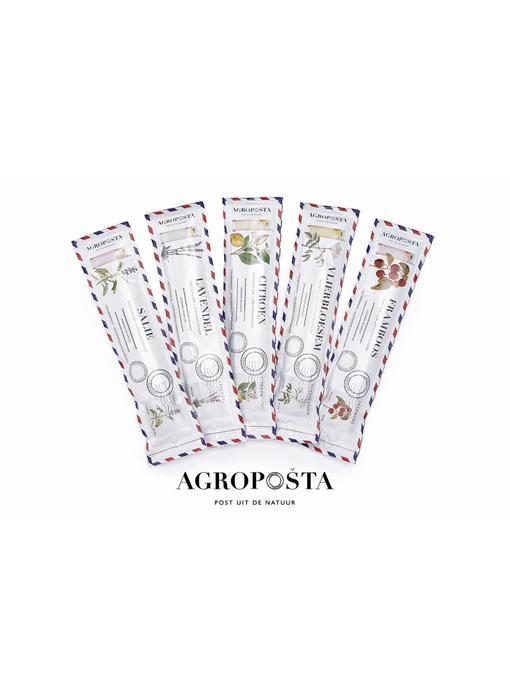 Agroposta Vlierbloesemsiroop