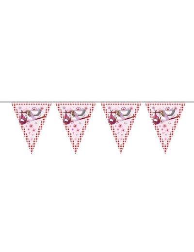 Roze Vlaggenlijn Met Ooievaars