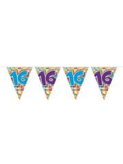 Geblokte 16e Verjaardag Vlaggenlijn