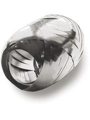 20m Metallic Zilver Ballonnenlint