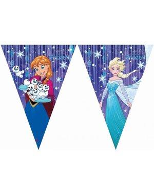 Blauwe Frozen Vlaggenlijn