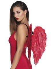 Rode veren vleugels duivel
