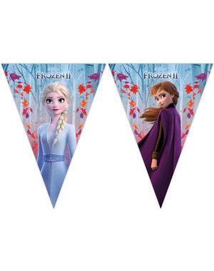Vlaggenlijn Frozen 2 - 2mtr