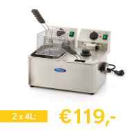 professionele elektrische friteuse 8 liter