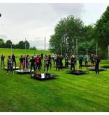 Pole fitness workshop
