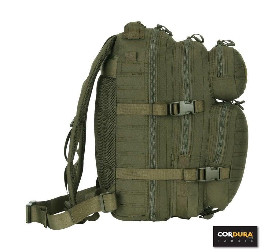 1-Day Assault Backpack LQ16173 (Olive)